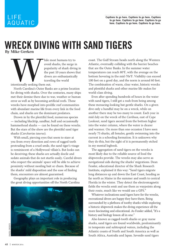 Alert Diver Magazine - Wreck Diving With Sand Tigers Page 1