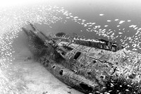 Wreck of the U-352