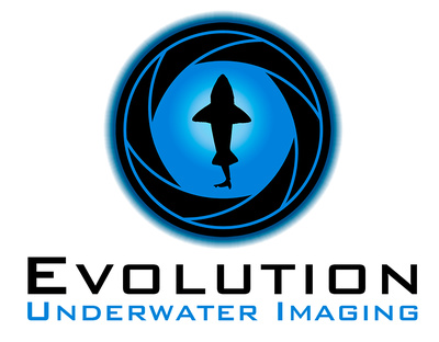 Evolution Underwater Imaging